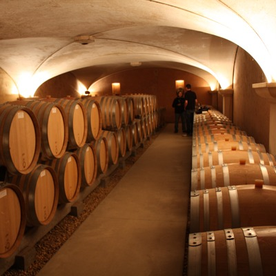 The beautiful barrel cellar for the reds from Anne Gros, Vosne-Romane