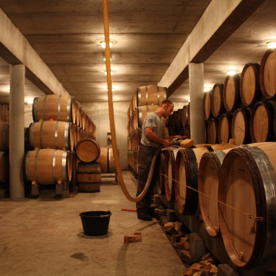 Aurélien Verdet in his (fairly) new cellar