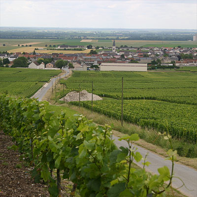 The Grand Cru village of Bouzy home town of Champagne Barnaut