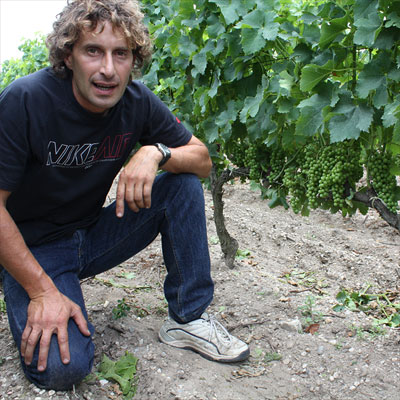 Michel Théron in the vineyard of Clos du Jaugueyron: look how perfect his grapes are lined up!