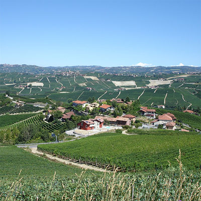 The rolling hillside vineyards of Barolo