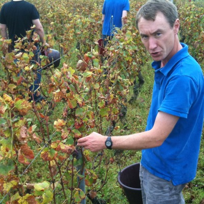 David Clark in his Vosne vineyard